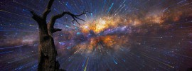 Star Trails, Lincoln Harrison