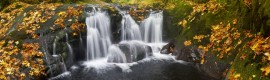 """Sweet Creek Falls in Autumn"" by David Putzier"