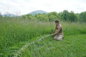 Braiding strands of grass